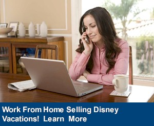Academy Travel is a Diamond EarMarked Disney Travel Agency - Become a Diisney Travel Planner with us