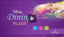 Learn more about all your Disney Dining Plan options with this informative video!