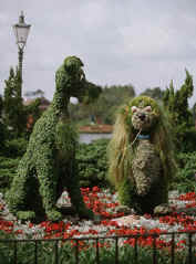 Lady and the Tramp topiaries at the 2005 Epcot Garden Festival